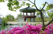 봄 맞은 춘천으로 맛집찾아 떠나요